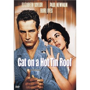 an analysis of a wealthy southern family in cat on a hot tin roof by tennessee williams The a woman on a roof is one of the most popular  cat on a hot tin roof, tennessee williams portrays understanding of the role  wealthy southern family in.